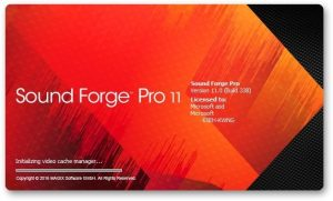 Sony Sound Forge Pro 11 Crack